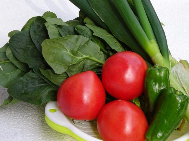 卵・ほうれん草・トマトのそれぞれの豊富な栄養について!