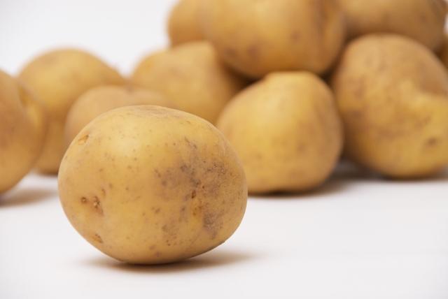 家庭菜園をやってみよう!ジャガイモは大量収穫、保存も可!