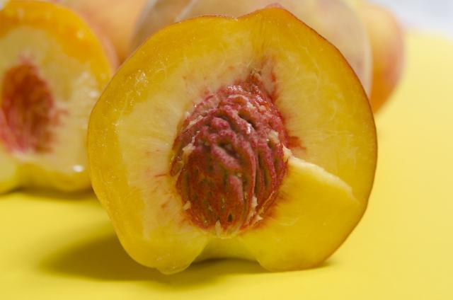 桃の種から発芽させて栽培したい!発芽を成功させるコツは?