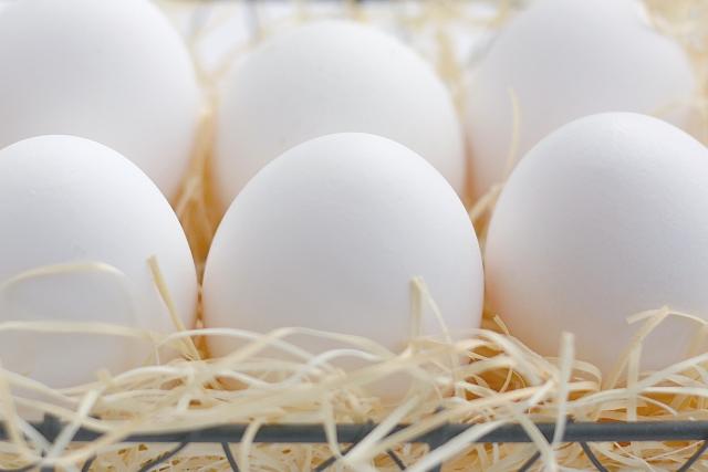 卵は常温で保存するのが正解?!卵の常識を学ぼう!