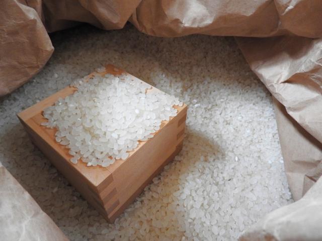 コイン精米機の使い方!無洗米の特徴とお米の保存方法も紹介