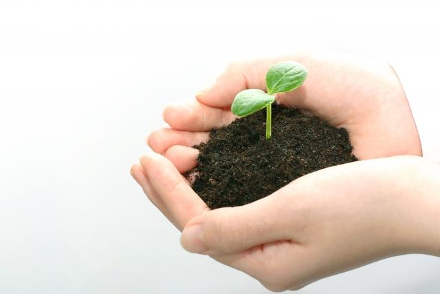 家庭菜園で使った土をもう1度使いたい!土は再生できる?