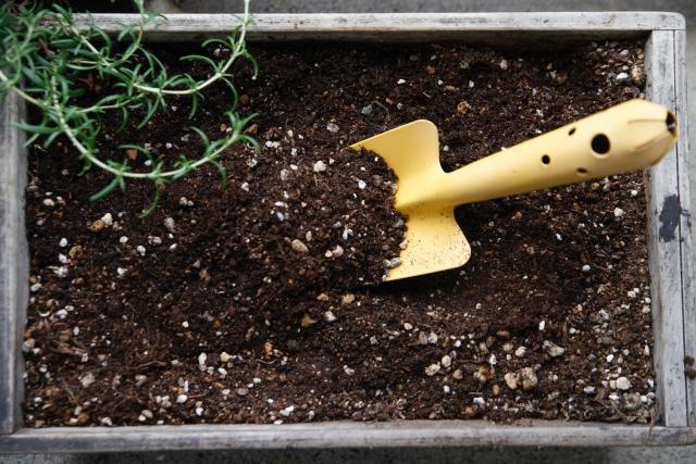 畑での野菜作りには石灰と肥料が必要?土作りの基本を知ろう