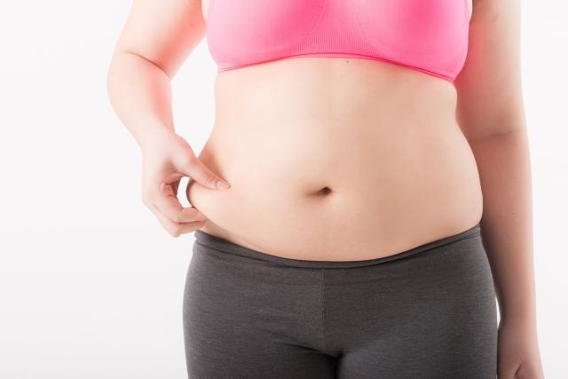 脂肪などの栄養素の吸収率は食事の時間帯によって違うの!?