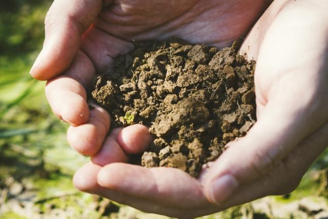 畑作りは土作りが命。土質別の土壌改良方法お伝えします