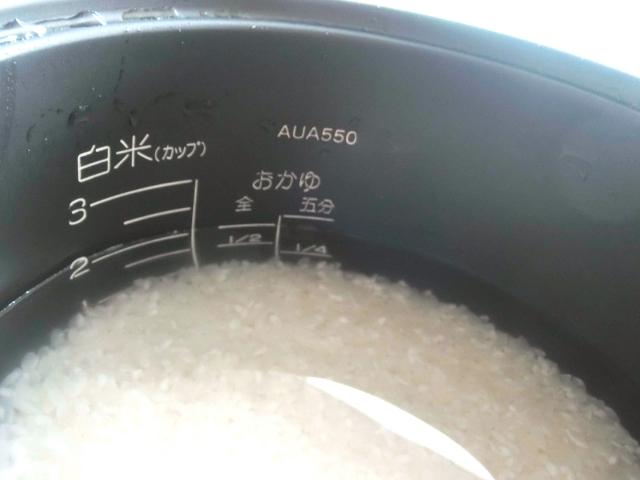 お米の吸水に丸一日かけると、ご飯は美味しく炊けるのか?