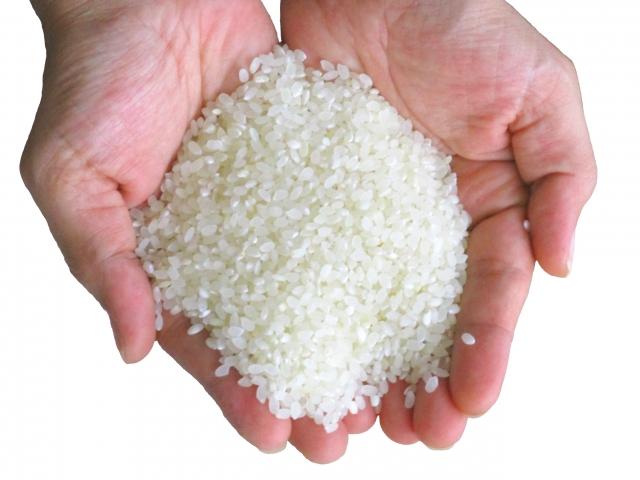 機械のなかった昔はお米のもみすりなども全て手作業だった?