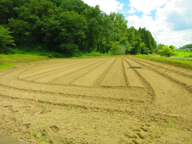 使っていない田んぼや畑を土地活用。転用で価格が変わる?