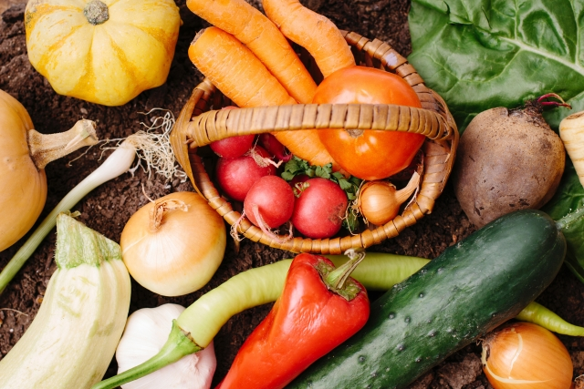 オーガニック野菜から考える農産物を作るための定義とは