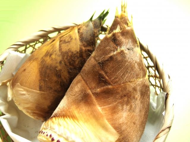 旬のたけのこを美味しく味わおう!味噌和えのレシピ3選