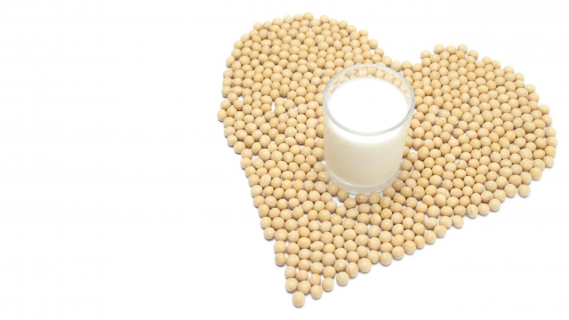 カロリーオフの強い味方!豆乳ダイエットで効果的に痩せる!