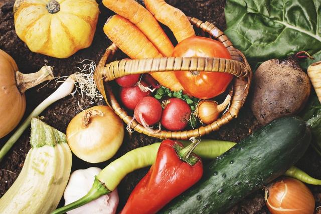 新しい未来化農業が作るオーガニック野菜のメリットを応援
