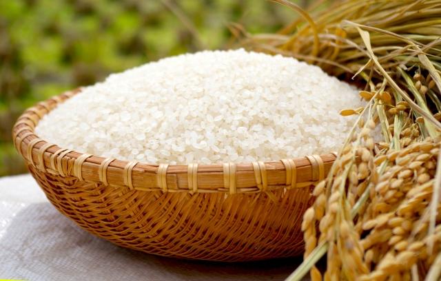 米油とトランス脂肪酸にはどんな関係があるの・・??