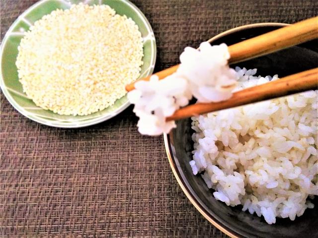 今、話題の食材!もち麦と玄米の栄養についてピックアップ!