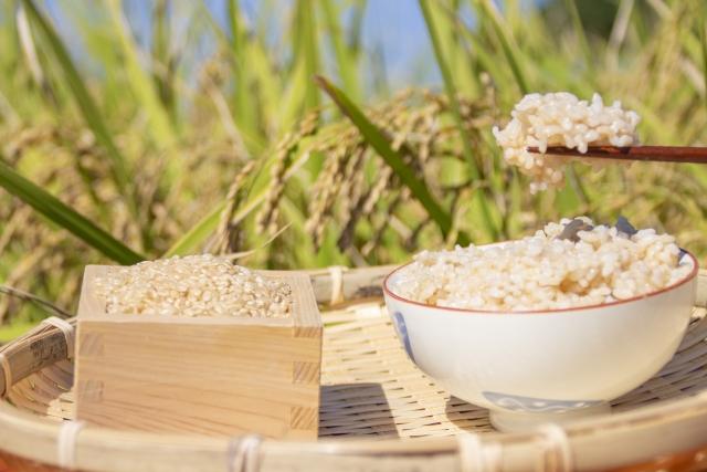 「玄米or5分づき米」どちらを食べる?栄養面の違いとは?