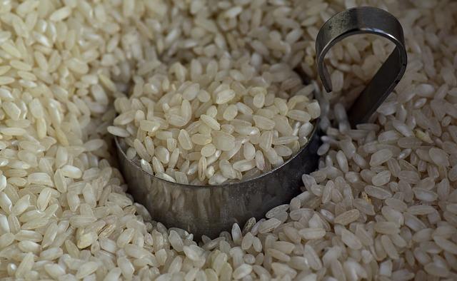 玄米は80gでも食べるべき食材?また糖質の体への影響は?