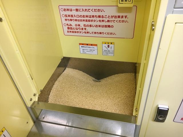玄米に虫が沢山湧いている場合に精米機を使用しても大丈夫?