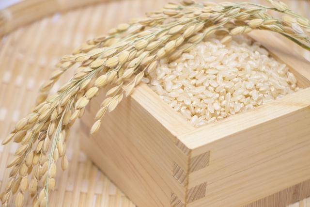 パサパサが気になる玄米2合のご飯が圧力鍋でもちもちご飯に