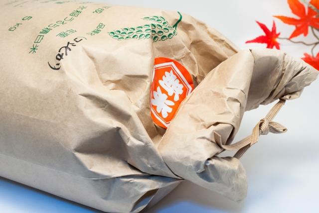 玄米が入った米袋に虫がわいてしまった!冷蔵庫保存で虫予防